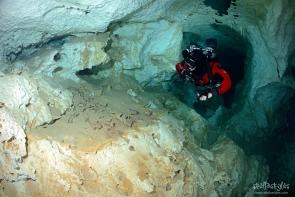 The Pit Cave, Bones