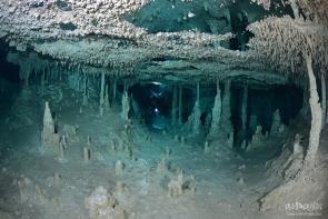 Fenomeno Cave