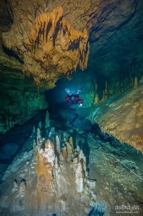 Camilo Cave